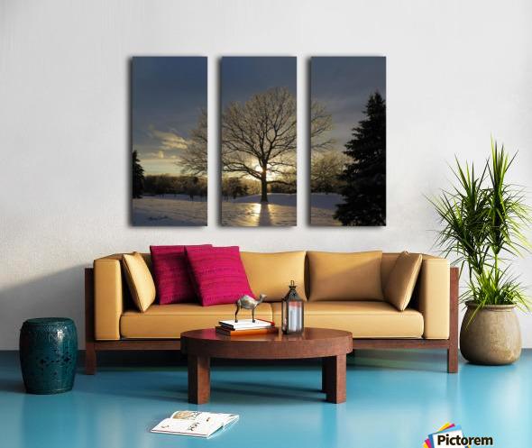 Winter Oak Split Canvas print