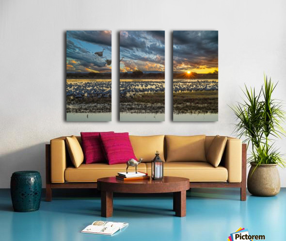Sunrise at the Bosque Split Canvas print