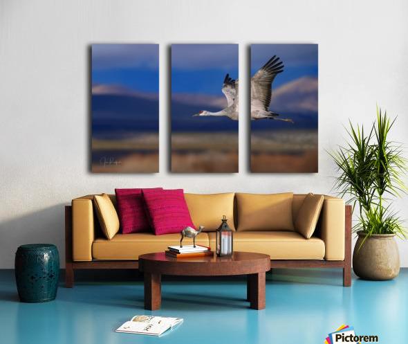 Crane over the Bosque Split Canvas print