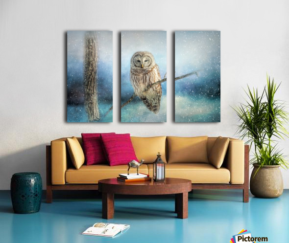 Barred Owl Solitude Split Canvas print