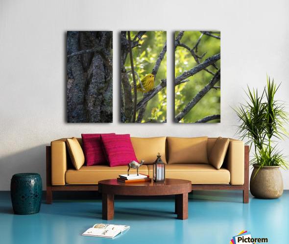 Ent Split Canvas print