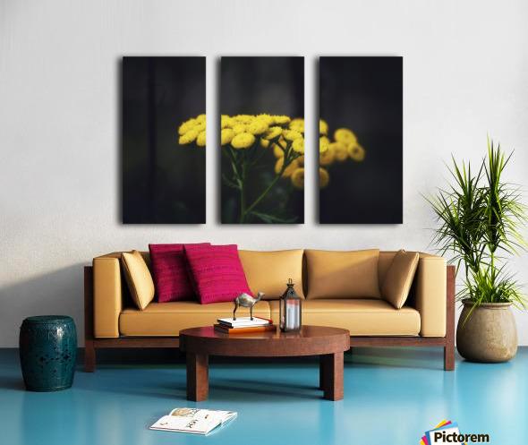 Bouquet Split Canvas print