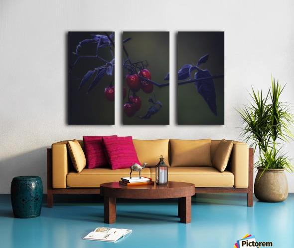 Nightshade Split Canvas print