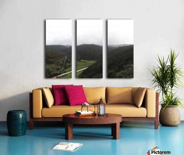 IMG_0063 Split Canvas print