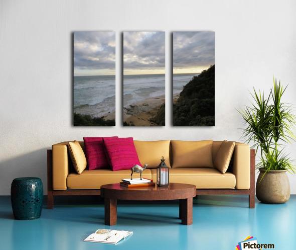 IMG_0243 Split Canvas print