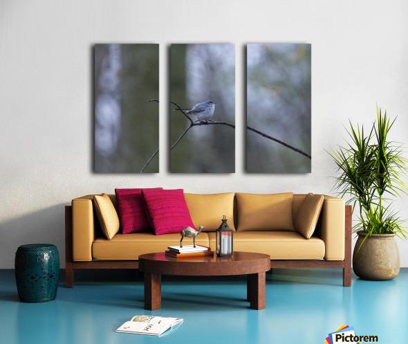 Blue Yonder Split Canvas print