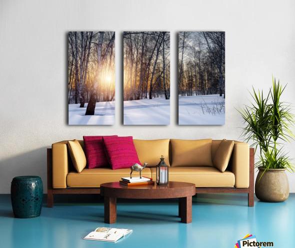 DSC_0351 10    1 Split Canvas print