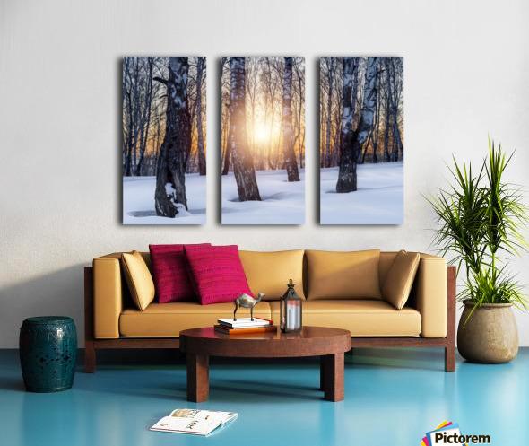 DSC_0347 10     1 Split Canvas print