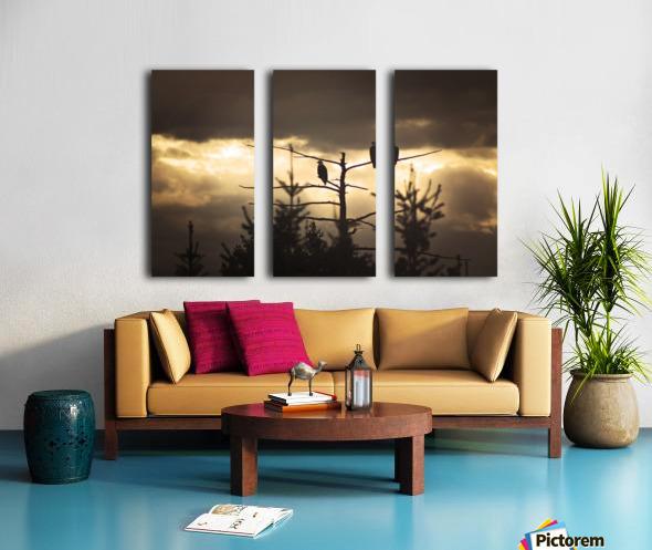 Seeing Double Split Canvas print