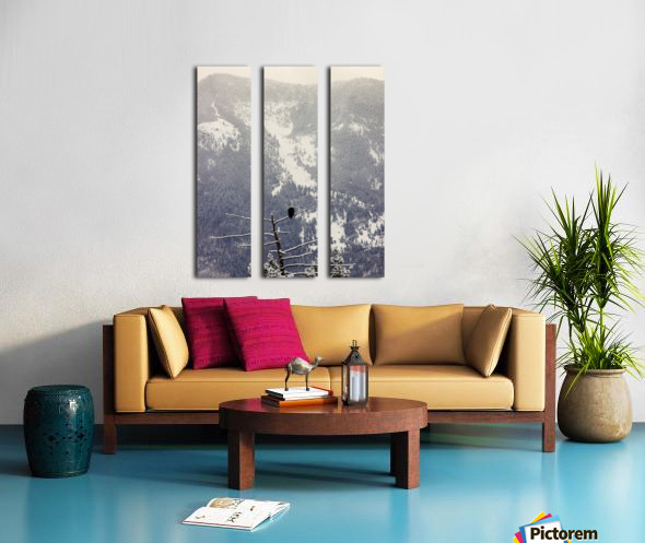 Snowy Split Canvas print