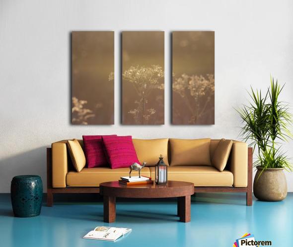 Morning Light Split Canvas print