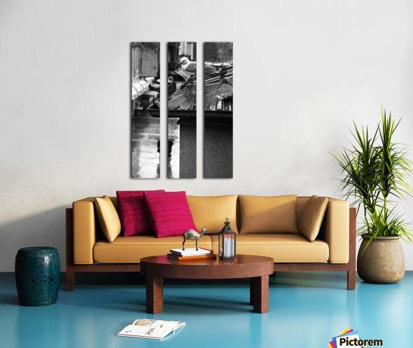 Gull Split Canvas print