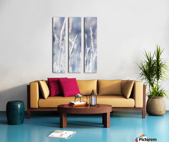 Spica Split Canvas print