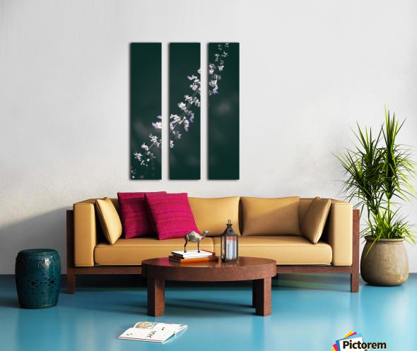 Salvia Split Canvas print