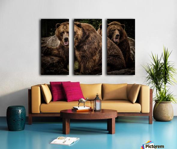 Brown Bear Brothers Split Canvas print