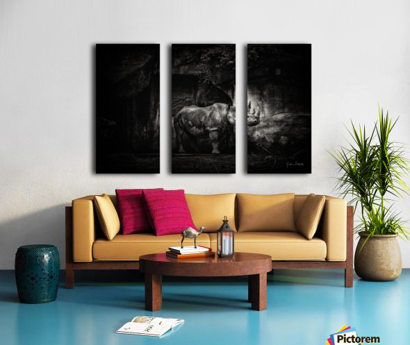 Rhino in Black & White Split Canvas print