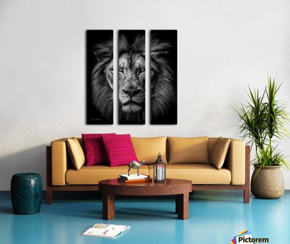A Lion in Black & White Split Canvas print