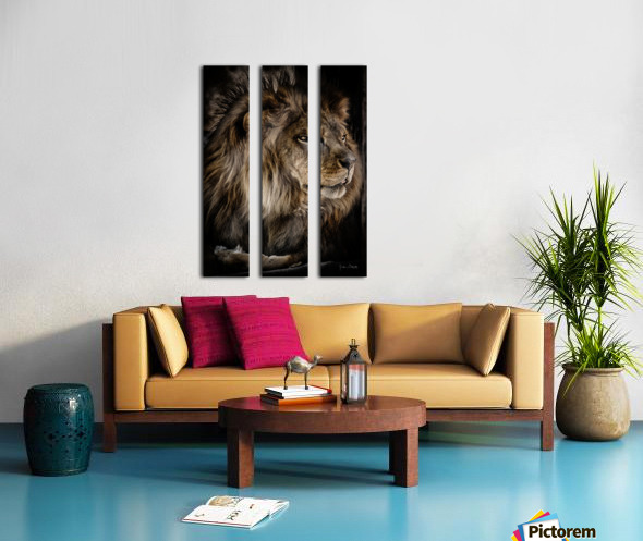 A Lions Profile Split Canvas print