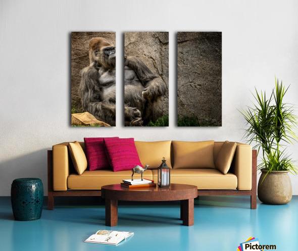Big Daddy Silverback Gorilla Split Canvas print