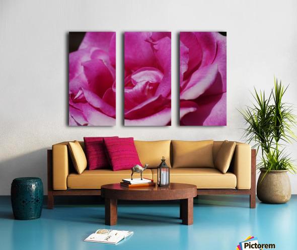 Heart Of Pink Rose Split Canvas print