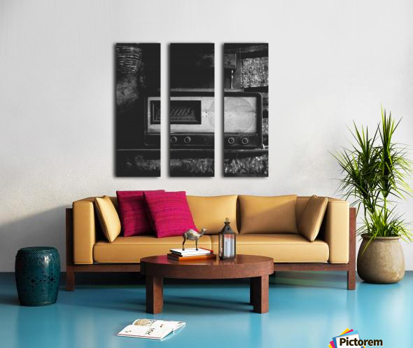 Radio Split Canvas print