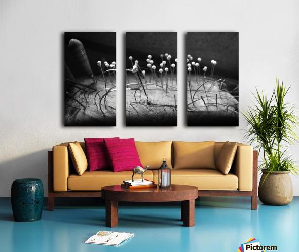Pincushion Split Canvas print