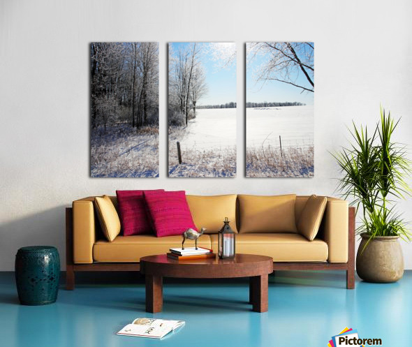 Frosty Winter Countryside I Split Canvas print