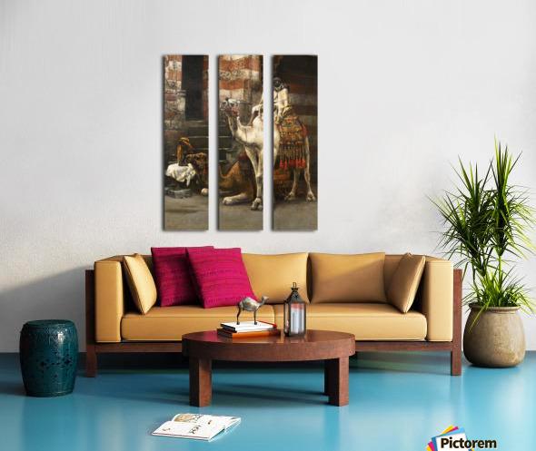 Camels on Cairo street Split Canvas print