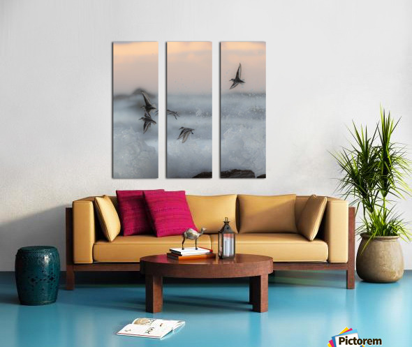 Thriving in chaos. Split Canvas print