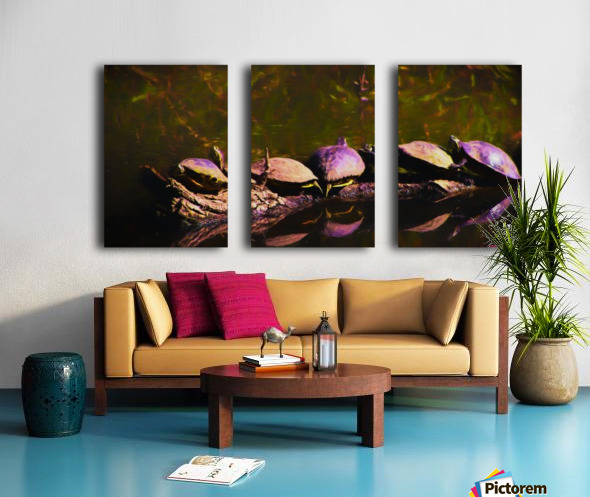 Freshwater Turtles Watercolor Split Canvas print