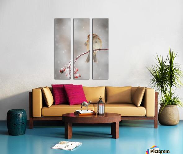 Subtle beauty Split Canvas print