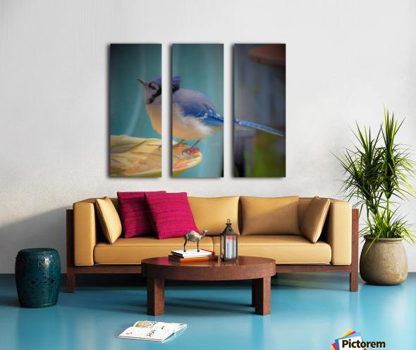 Geai bleu Split Canvas print