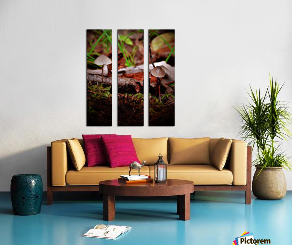 Cueillette sauvage Split Canvas print