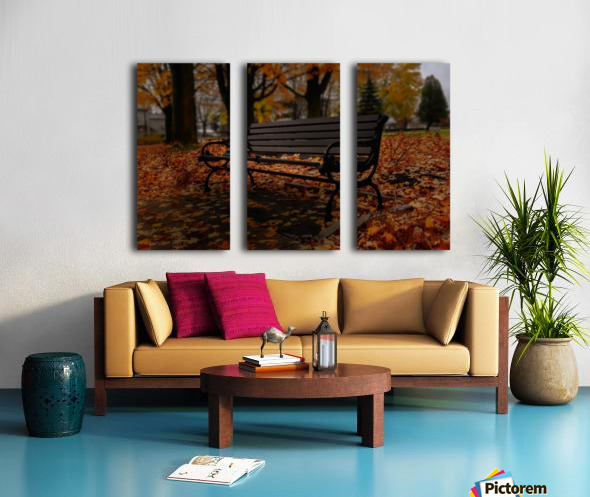 La saison de lumiere Split Canvas print