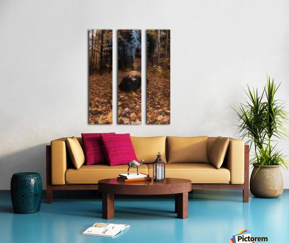 Tapis de feuille Split Canvas print