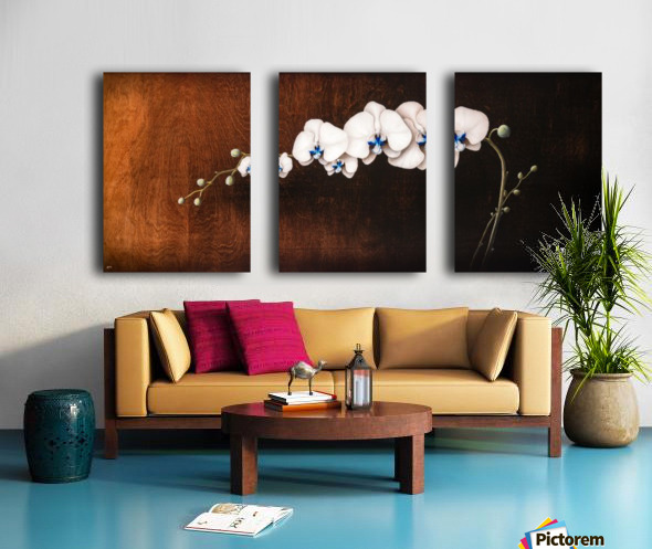 Orchids and Moonlight Split Canvas print
