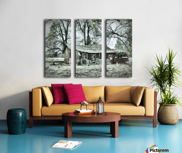 Abandoned Homestead Split Canvas print