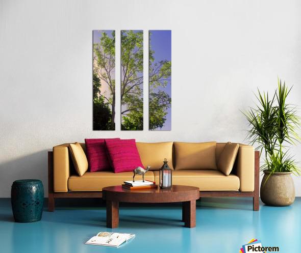 Touching the Sky Split Canvas print