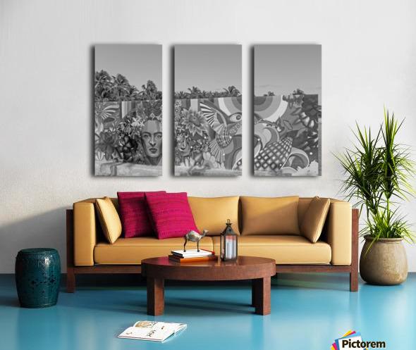 Bursting with Colour B&W Split Canvas print