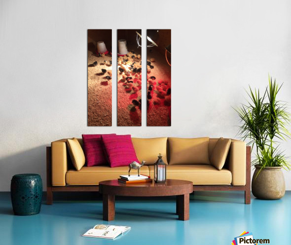 IMG_1171 Split Canvas print