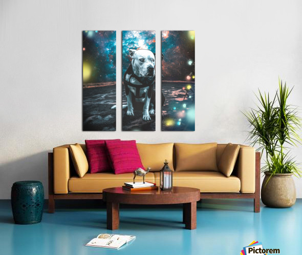 cosmos background space dog Split Canvas print