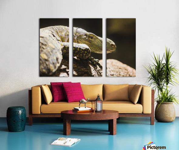 komodo dragon Split Canvas print
