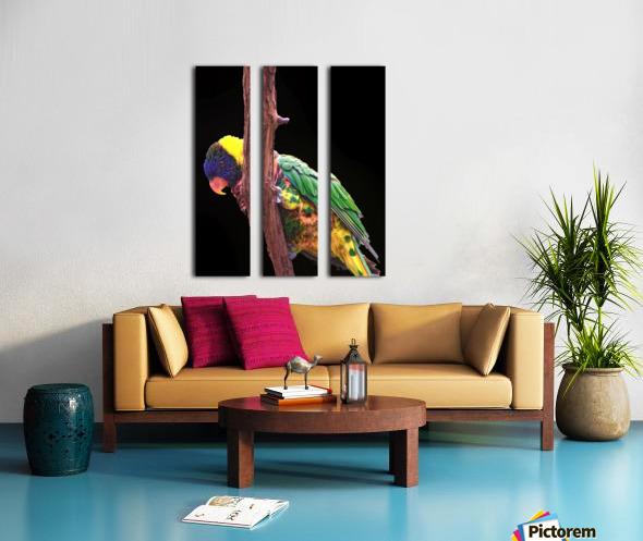 Colorful Bird on branch Split Canvas print