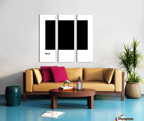 Solid Black process color with word Split Canvas print