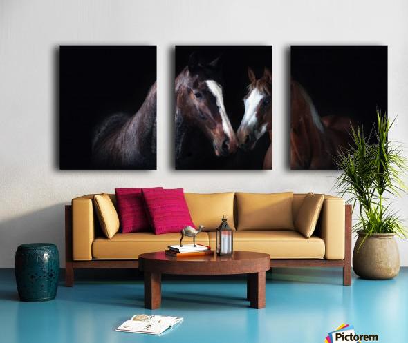 Studio Horses Split Canvas print