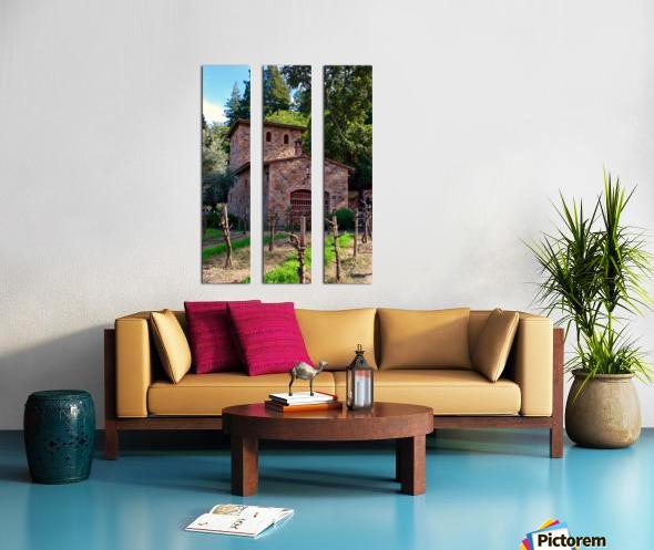 IMG_8112 Split Canvas print