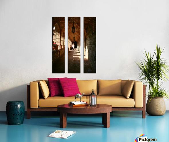 IMG_8147 Split Canvas print