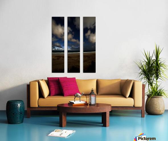 Shadow of the Palm  Split Canvas print
