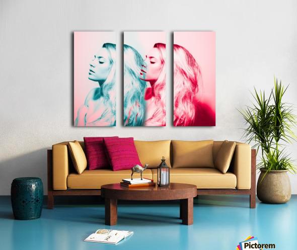 Double Vision Split Canvas print