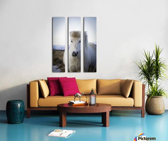 IMG_1184 2 Split Canvas print